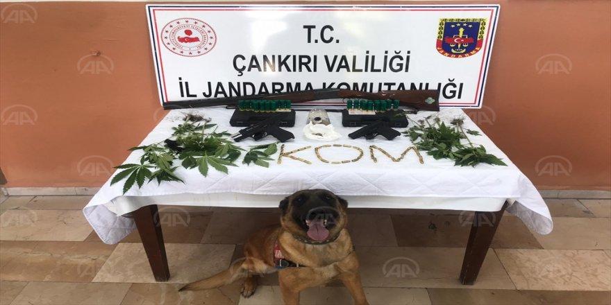 Çankırı'da akaryakıt istasyonunun bahçesinde Hint keneviri bulundu