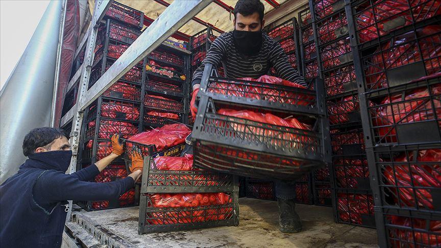 Koronavirüs meyve-sebzeye ilgiyi artırdı, ihracat yüzde 22 arttı!