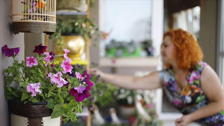 Koronavirüsle evler çiçeklendi!