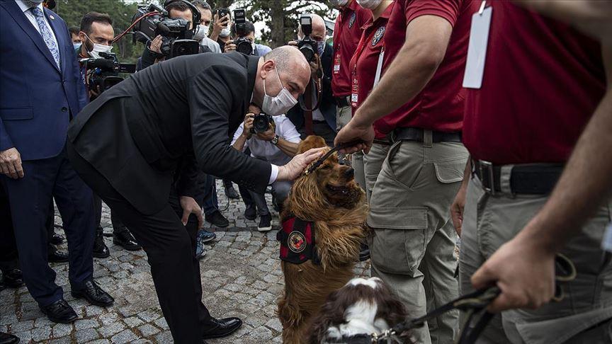 Soylu: Yakalamaların yüzde 46'sı narkotik köpekleri marifetiyle gerçekleştirilmiştir