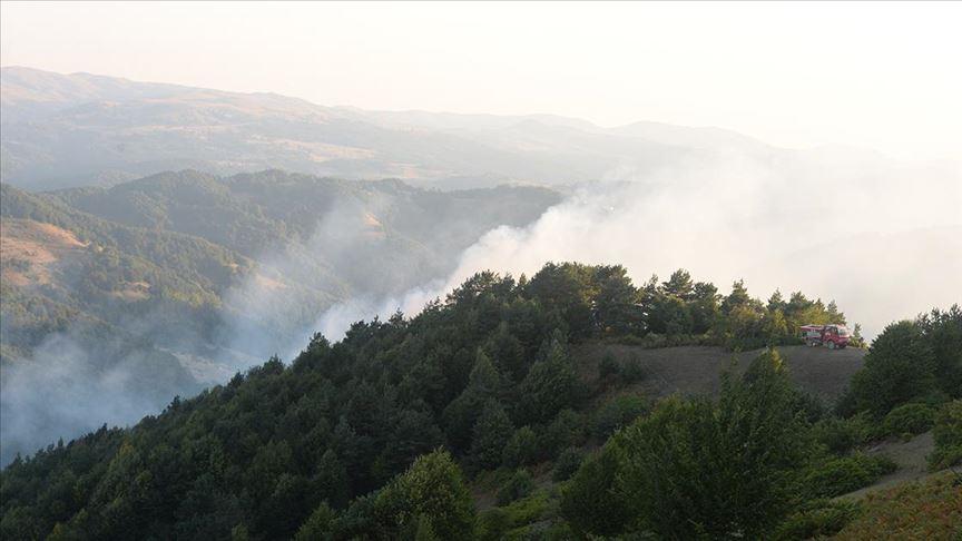 Tokat'taki orman yangını kontrol altına alındı!