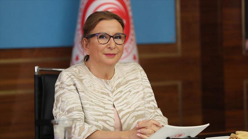 Pekcan: Türk firmaları, Libyalılar ile görüşerek projelerdeki işlerini sonuçlandırabilecek