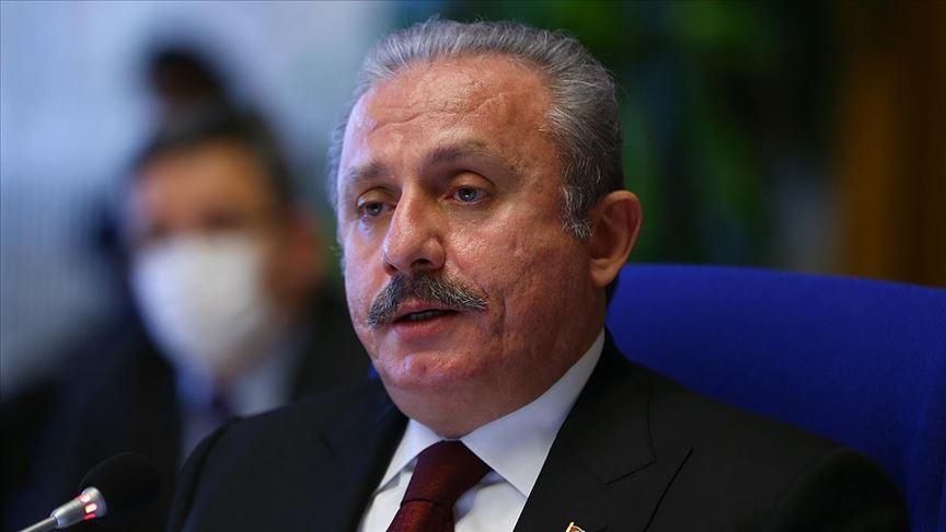 Şentop Türk gemisinin hukuk dışı aranmasını kınadı
