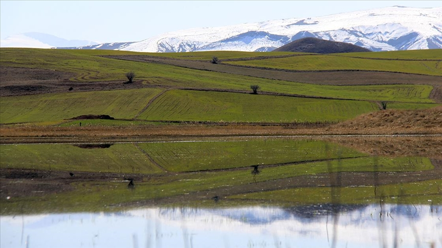 Mersin ve Sivas'ta bazı bölgeler 'kesin korunacak hassas alan' ilan edildi