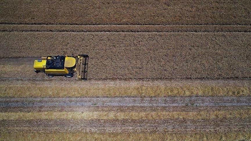 Tarımsal girdi fiyat endeksi şubatta arttı!