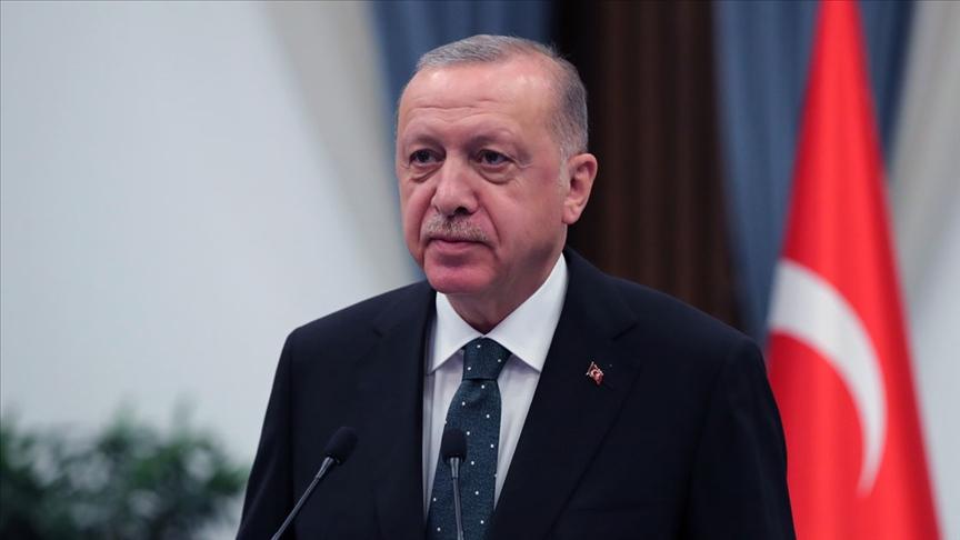 Erdoğan orman yangınlarından etkilenen bölgelerde incelemelerde