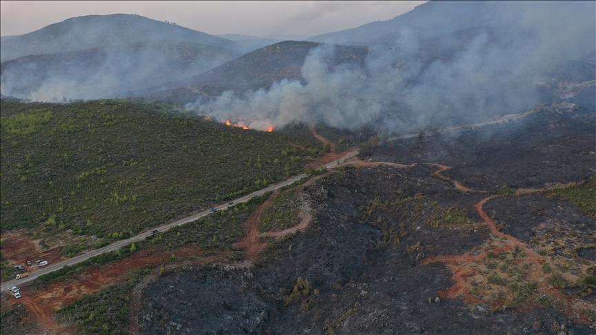 Bodrum'daki orman yangınını söndürme çalışmaları aralıksız sürüyor