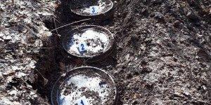 Bitlis'te teröristlere ait patlayıcı ve yaşam malzemesi bulundu