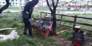 Beyşehir'de uyuşturucu operasyonu
