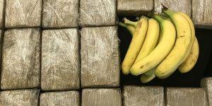 Muz konteynerinde '185 kilogram kokain' ele geçirildi!