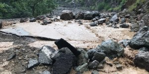 Pakdemirli: Araklı'daki selde 3 kişi yaşamını yitirdi 7 kişi kayıp