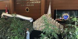 İstanbul Polisi Uyuşturucuyla Mücadelede Rekor Kırıyor!
