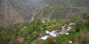 Ailelere yaz tatili için 'köy hayatı' tavsiyesi