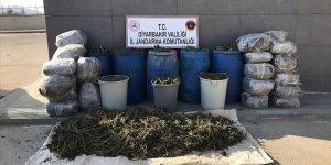 Diyarbakır'da araziye saklanmış halde 702 kilogram esrar ele geçirildi