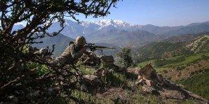 Bitlis'te 2 terörist etkisiz hale getirildi!