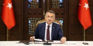 Cumhurbaşkanı Yardımcısı Oktay'dan Semiha Yıldırım ile ilgili ifadelere kınama