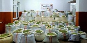 Diyarbakır'da 1 ton 756 kilogram esrar ve 90 bin kök Hint keneviri ele geçirildi