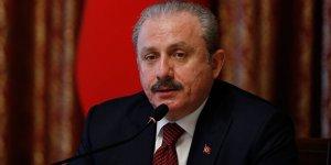 Şentop: Atatürk büstlerine yapılan provokatif, alçakça saldırıları kınıyorum