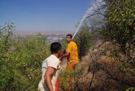 Afyonkarahisar'da yangın: 10 dönümlük dikili alan zarar gördü