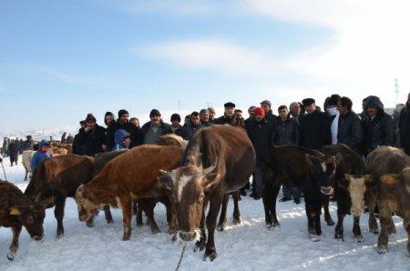 Ardahan'daki dondurucu soğuklardan CHP'li Vekil de nasibini aldı