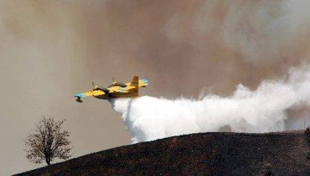 Aydın'daki yangın kısmen kontrol altına alındı