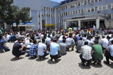 Bingöl'deki olaya STK'lar tepki gösterdi