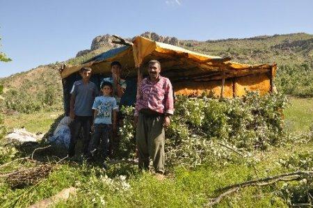Çatışma bölgelerinde şimdi çocuk cıvıltıları yükseliyor