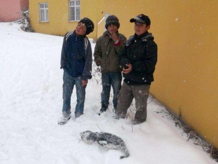 Evliya Çelebi'nin Seyahatname'de anlattığı olay Ardahan'da gerçek oldu