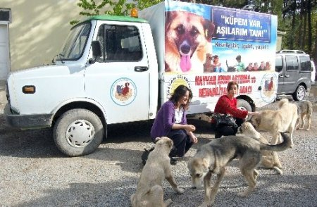 Hayvanlar için acil yardım aracı tahsis edildi