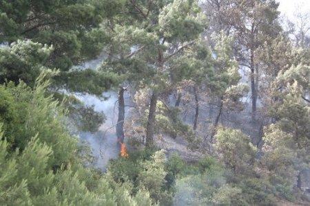 İzmir-Manisa yolunu kapatan yangın hala söndürülemedi