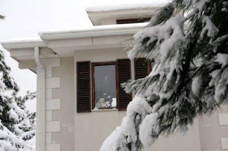 Kediler, sıcak villalarında kar manzarasını tadını çıkartıyor