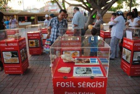 Manavgat'ta 400 milyon yıllık fosil sergisi açıldı