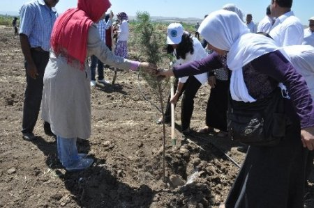 Öğrenciler, su arıtma tesisini gezdi
