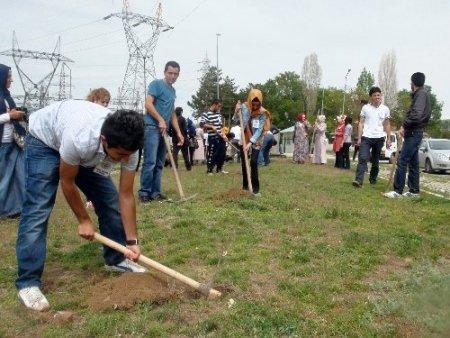 Reyhanlı'daki patlamada ölenlerin hatırasına 52 fidan dikildi
