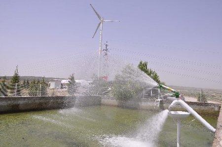 Rüzgar enerjisiyle tarım arazileri sulanacak
