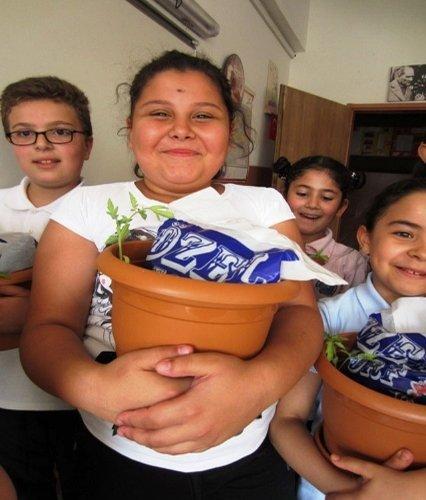 'Saksıda Domates Yetiştirme Yarışması' başladı