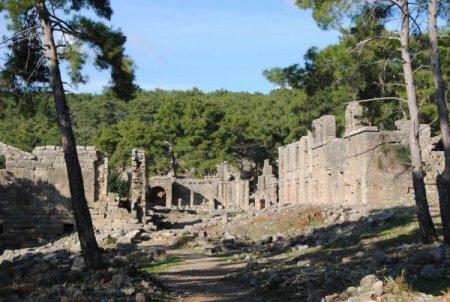 Seleukeia Antik Kenti'nde tarihi eserlere zarar veren çamlar budanacak