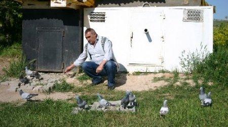 Sivaslı kuşbazlar meydan okudu