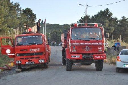Sultanbeyli'deki orman yangını, kontrol altına alındı