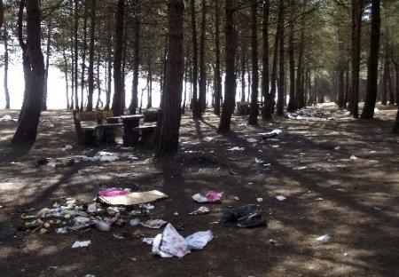 Terme'nin tek piknik alanı çöplük içinde