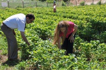 Tunceli'de kadınlar üretiyor