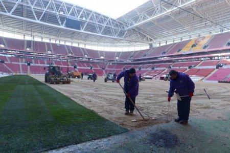 Türk Telekom Arena'da çimler serilmeye başlandı