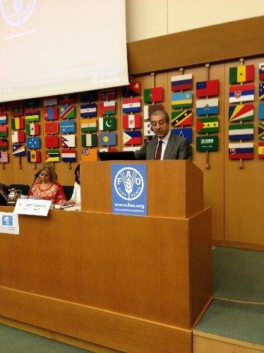 Türkiye, BM'nin FAO Konsey üyeliğine seçildi
