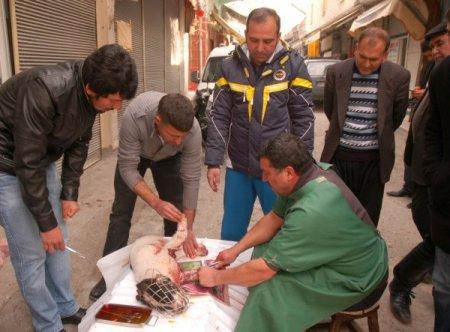 Vicdanlı vatandaş, minibüsün çarptığı köpeği ameliyat ettirdi