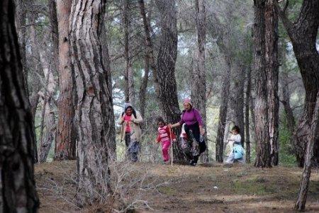 Yangın riskinin yüksek olduğu dönemlerde ormanlık alanlara girmek yasak