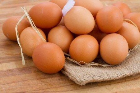 Yumurta ihracatı 500 milyon dolara koşuyor