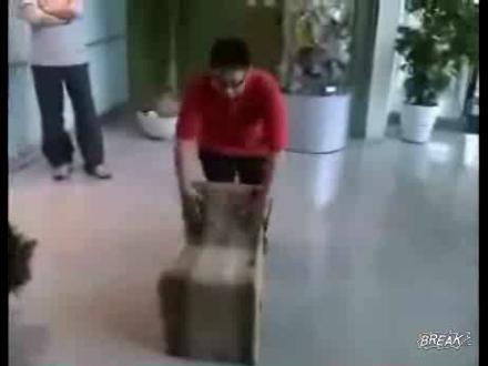 Harika Bir Sandalye Tasarımı